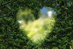 Miłość Szkolna
